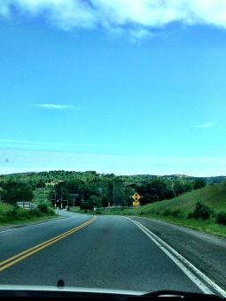 Loving the open, winding road.